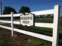 Boxer's Rest
