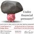2016_financialliteracy